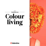 Ofertas de Valentine Decocenter, Colour living