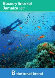 Buceo & Snorkel - Jamaica 2017