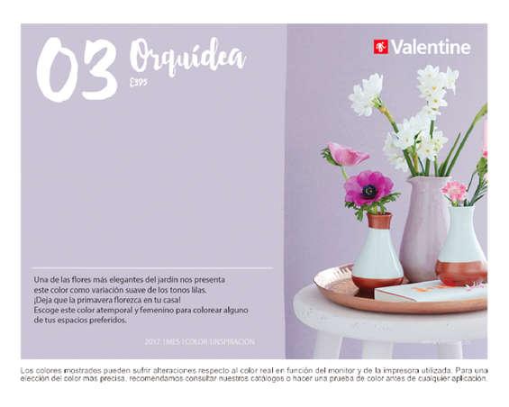 Ofertas de Valentine Decocenter, 1 mes 1 color - Marzo