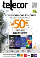 Ofertas de Telecor, Revista noviembre