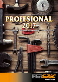 Profesional 2017