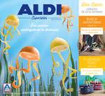 Ofertas de ALDI, Este verano sumérgete en la diversión